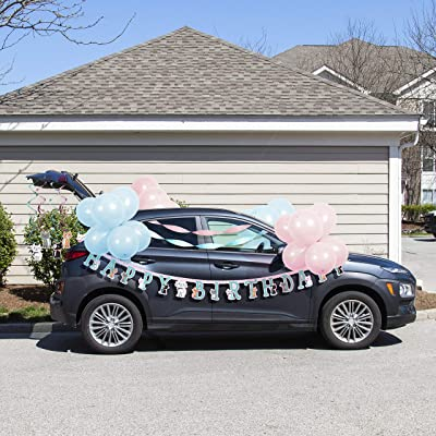 Purr-Fect Party Birthday Parade Car Decorations Kit: Toys & Games
