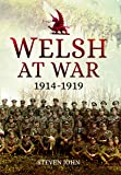 Welsh at War: From Mons to Loos and the Gallipoli Tragedy
