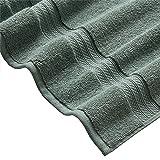 Stone & Beam Heavyweight Turkish Cotton Towel