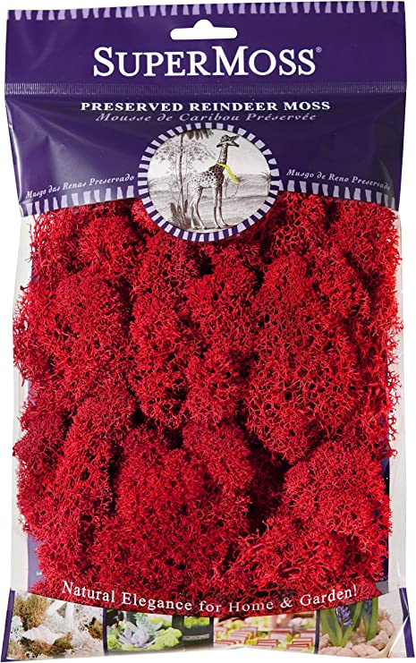 Reindeer Moss Preserved SuperMoss 2oz Red 25122