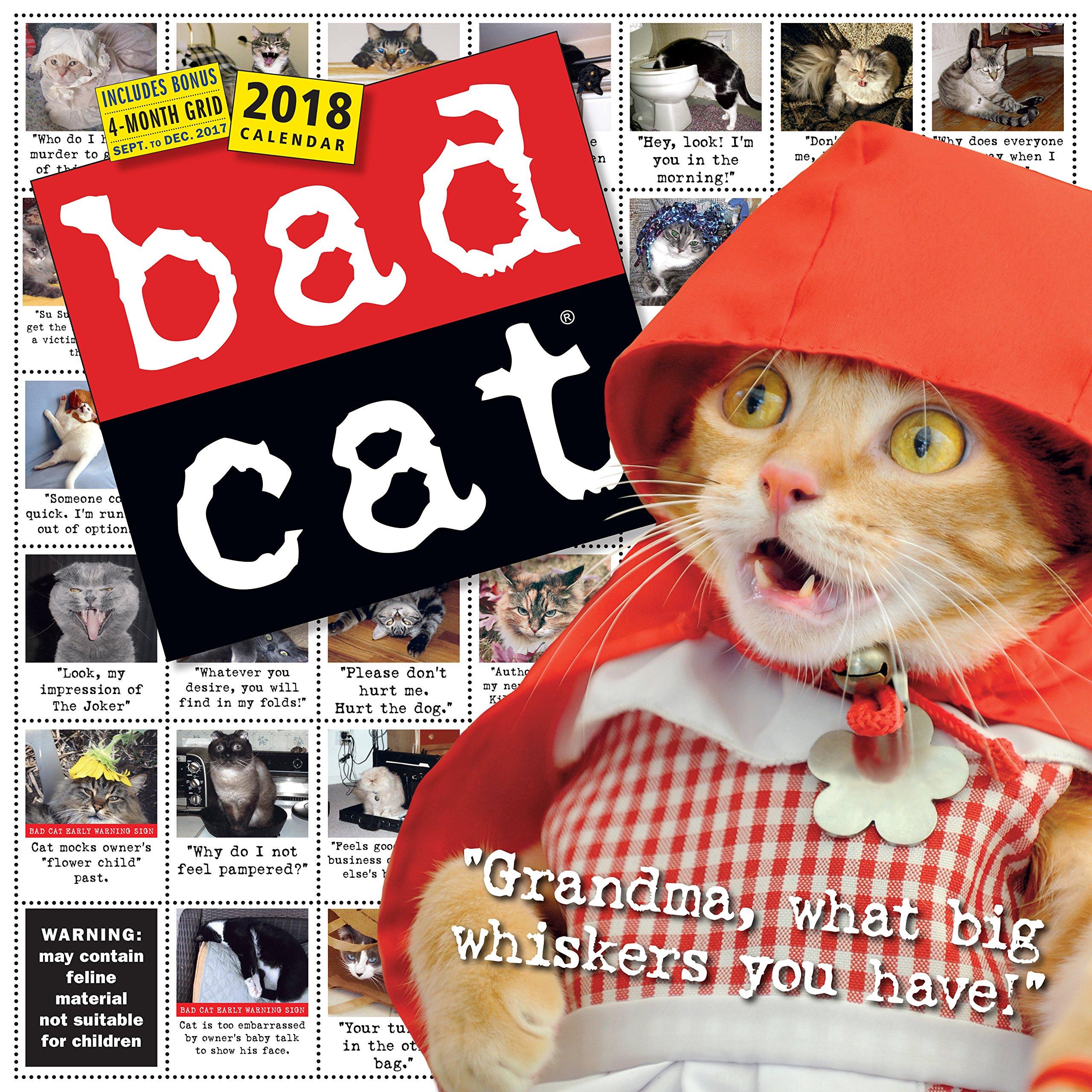 Read Online Bad Cat Wall Calendar 2018 pdf