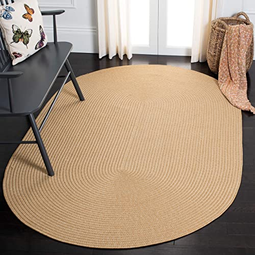 Safavieh Braided Collection BRD315D Handmade Country Cottage Reversible Area Rug