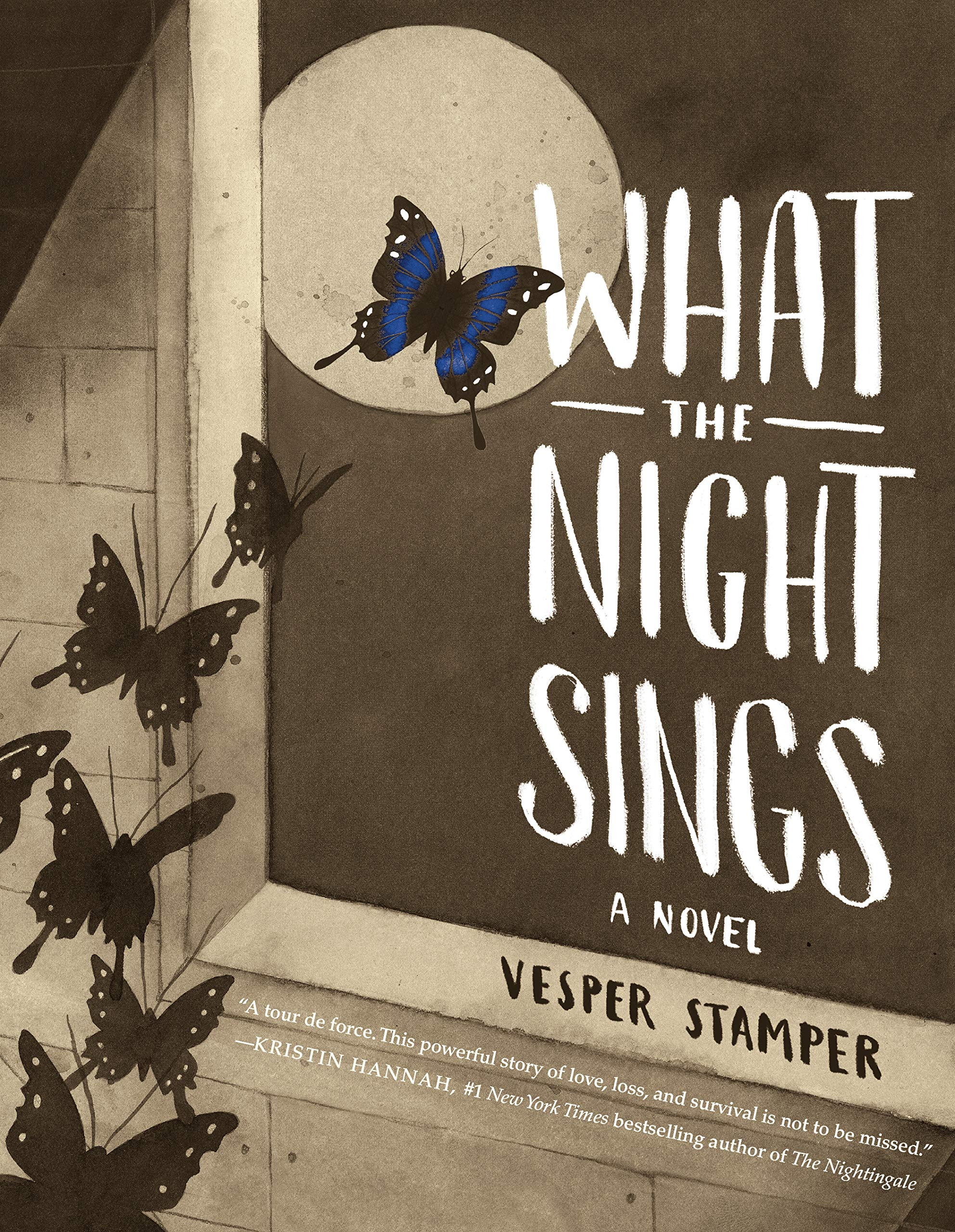 Image result for what the night sings