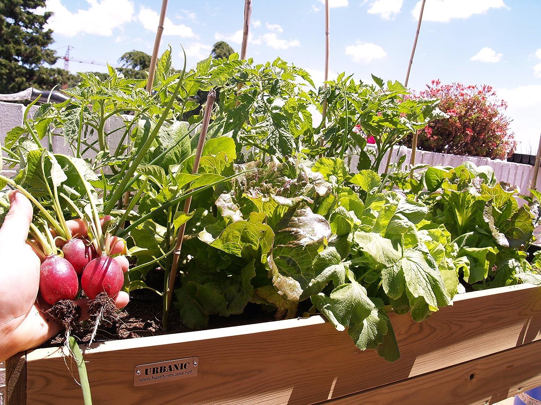 Urbanic ecopluslarge 130x52 altura 80cm: Amazon.es: Jardín