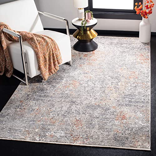 Safavieh Dream Collection DRM429G Grey and Multi 9 x 12 Area Rug,