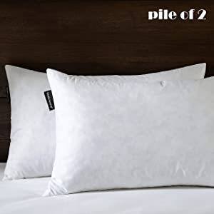 Basic Home 12x20 Decorative Throw Pillow Inserts-Down Feather Pillow Inserts-Oblong-Cotton Fabric-Set of 2-White. …