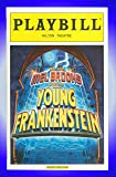 Young Frankenstein The New Mel Brooks