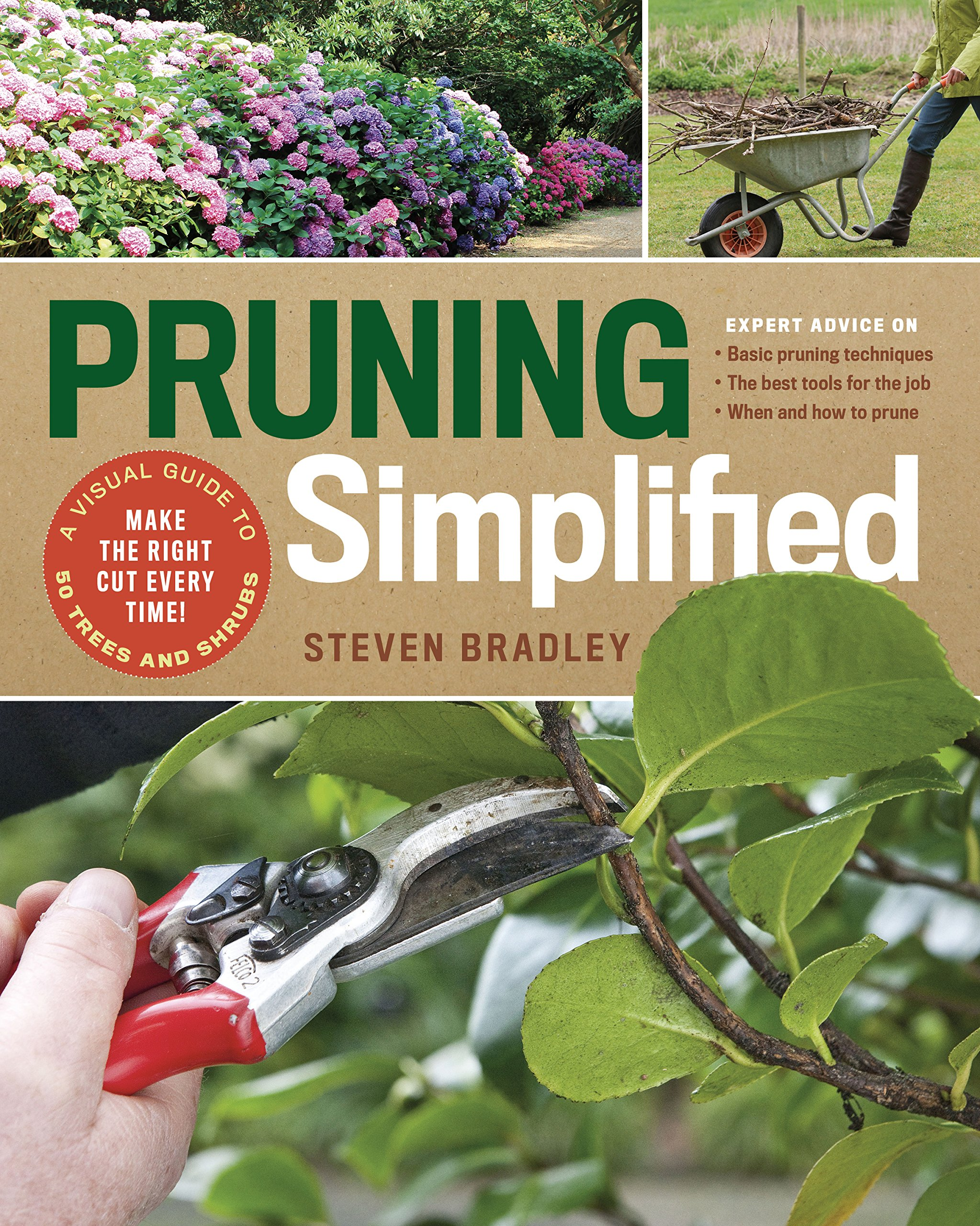 Pruning Simplified A Step By Step Guide To 50 Popular Trees And
