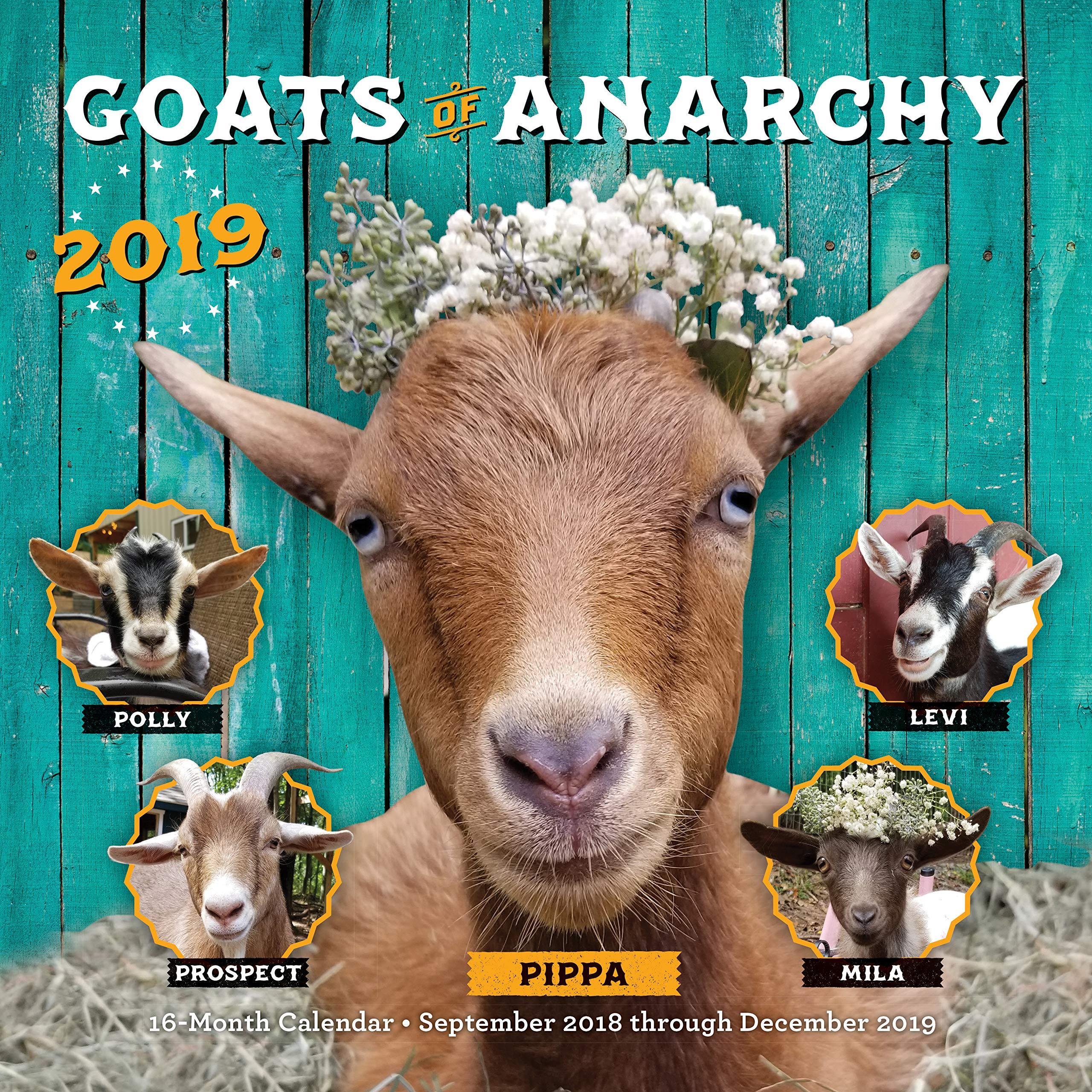 Doe Calendar 2020-16 Nyc Goats of Anarchy 2019: 16 Month Calendar   September 2018 through