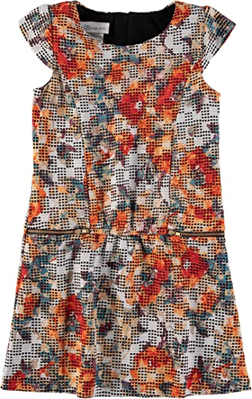 06a5c99b570 Bonnie Jean Girls' Christmas Holiday Special Occasion Dress (Multi Floral  Shift, 4/