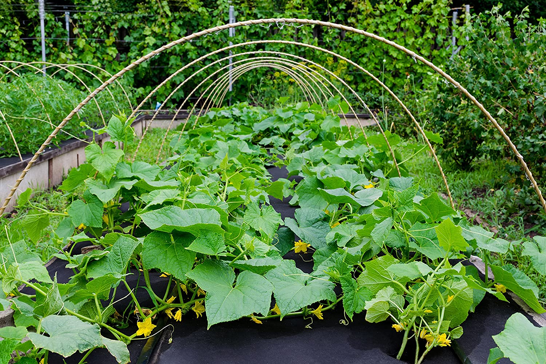 50m/² Unkrautvlies Gartenvlies Mulchvlies Vlies 180g 2m breit Premium Qualit/ät