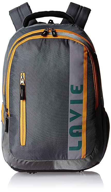 Lavie Prime 4 Grey Casual Backpack (B00120004036)  Amazon.in  Bags ... d79bd3618532c