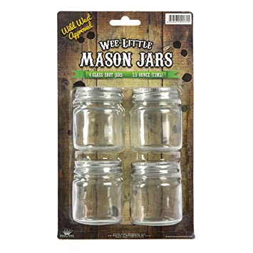 wee little mason jars with lids u2013 for food drinks and decoration u2013 clear - Mason Jar Glasses
