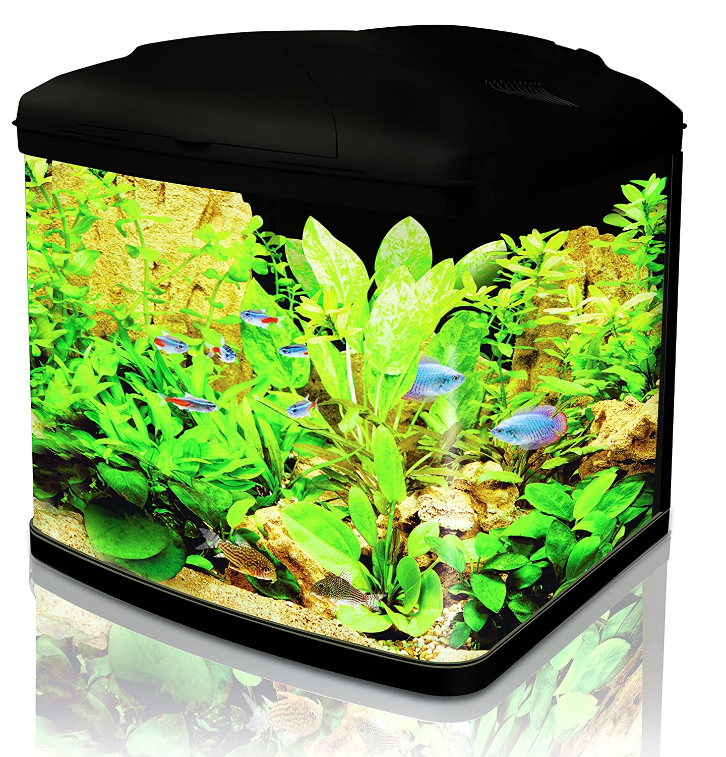 Interpet Fish Pod Glass Aquarium Fish Tank 48 Litre including CF1