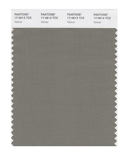 Amazon.com: Pantone Smart color Swatch tarjeta, 17-0613X ...