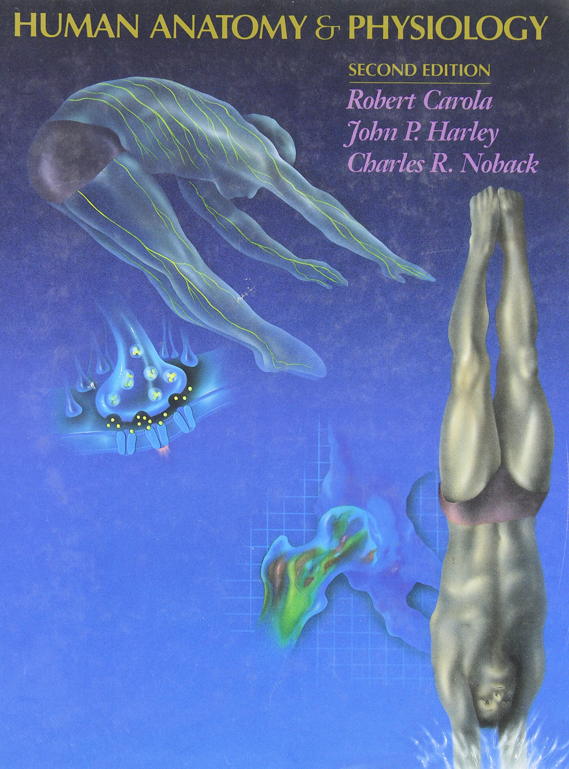 Human Anatomy and Physiology: Amazon.es: Robert Carola, John P ...