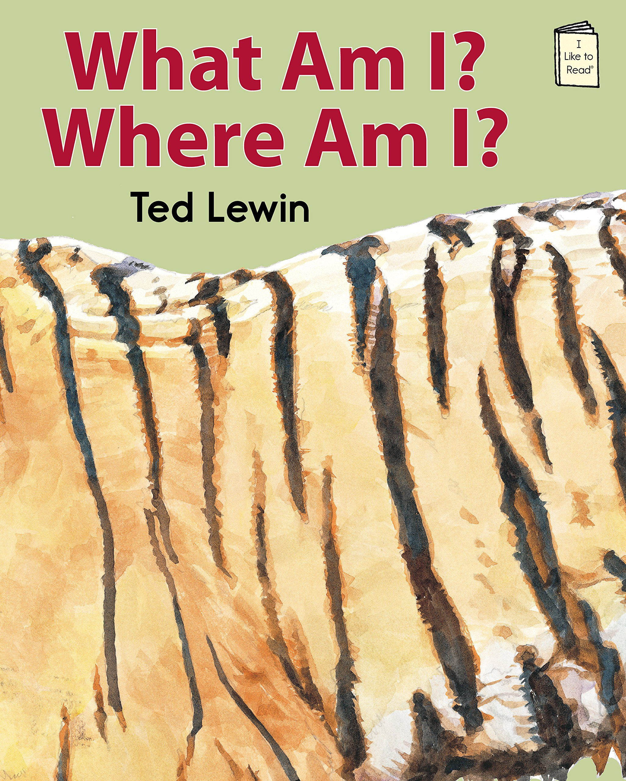 Amazon.com: What Am I? Where Am I? (I Like to Read® Level C ...