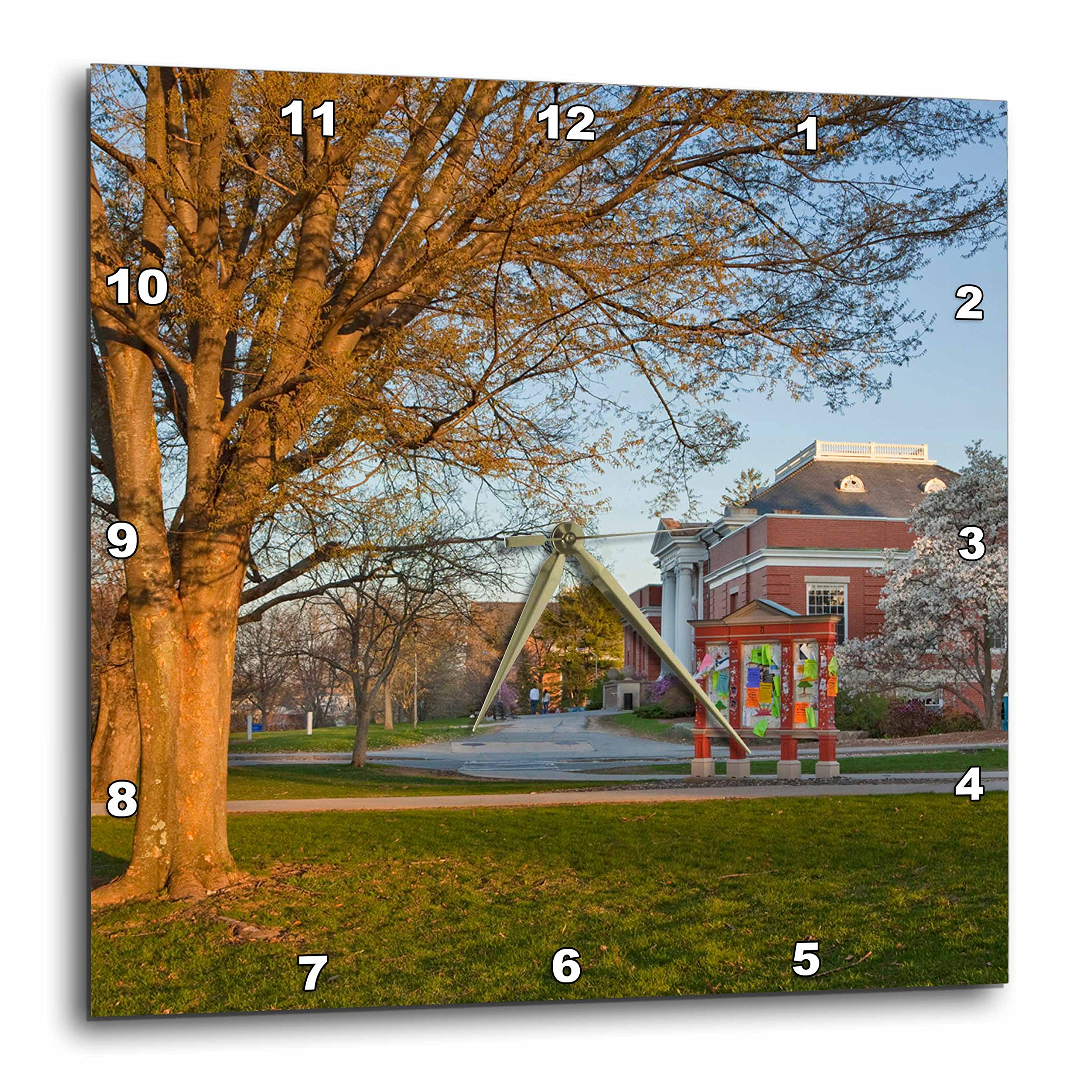 3dRose dpp_92433_1 Education, University of New Hampshire-Us30 Jmo1621-Jerry and Marcy Monkman-Wall Clock, 10 by 10-Inch