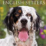 Just English Setters 2017 Wall Calendar (Dog Breed Calendars)
