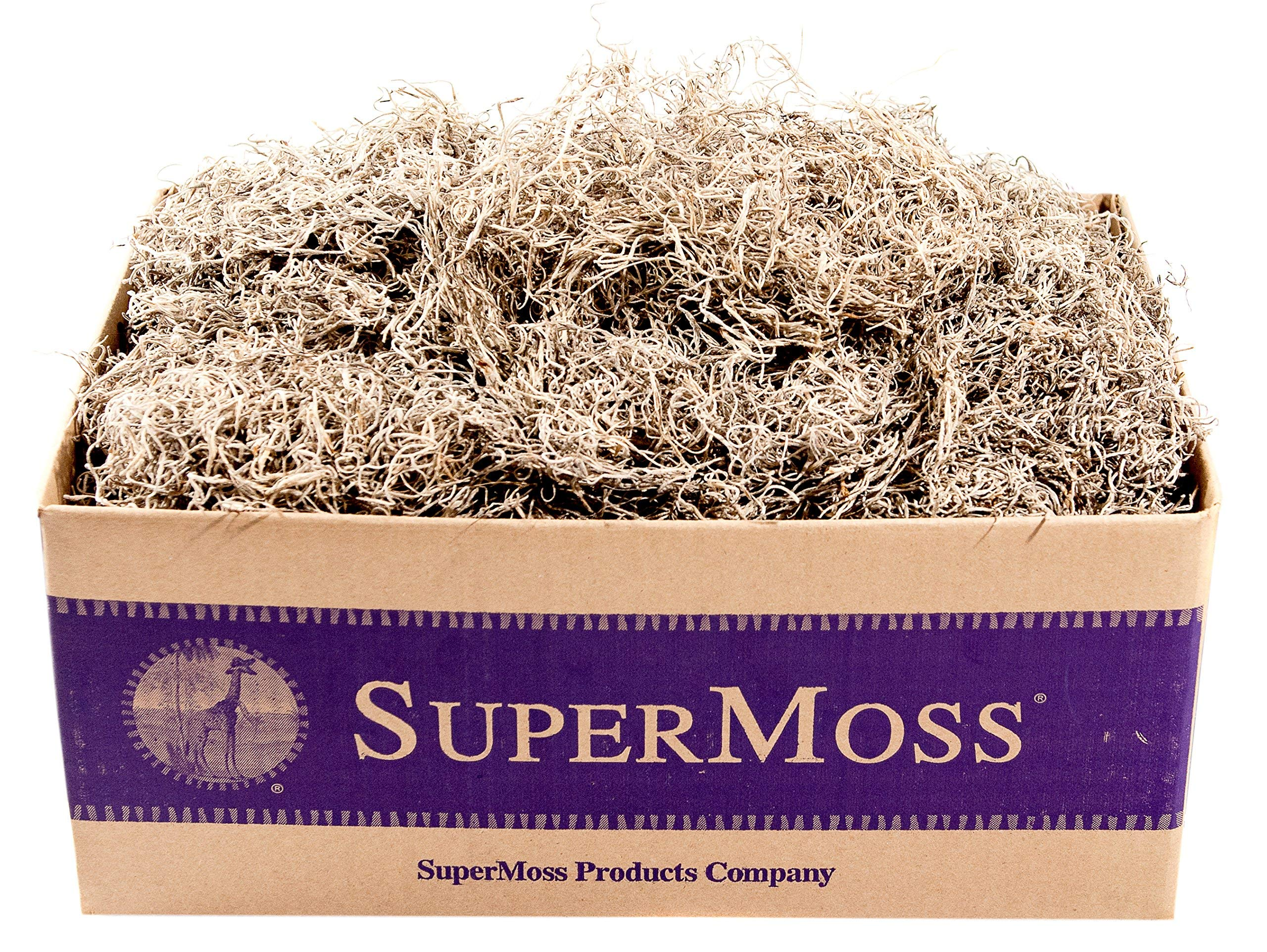 SuperMoss (26929) Spanish Moss Preserved, Natural, 3lbs (Renewed)