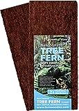 Fernwood Tree Fern Panels, Twin Pack for Vivarium, Terrarium, Drip Walls, Pets and Substrate