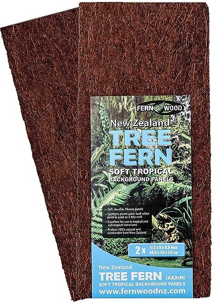 Amazon Com Fernwood Tree Fern Panels Large Size 17 5 X 8 Twin