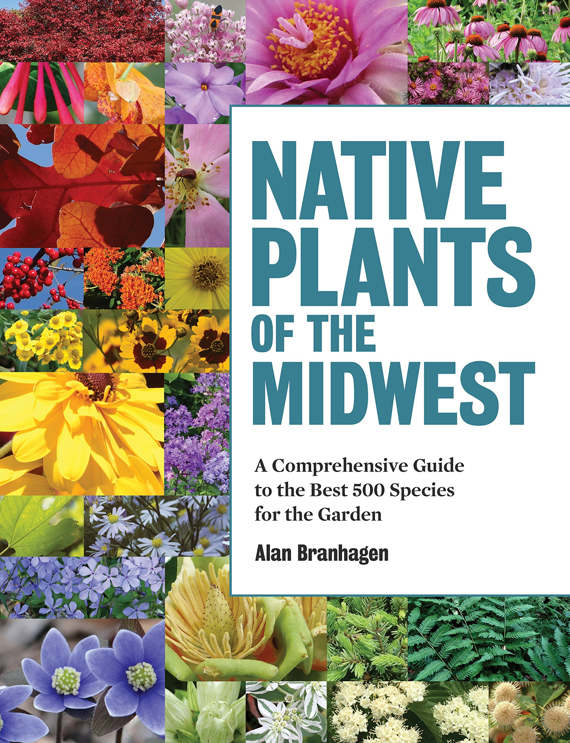 Native Plants of the Midwest: A Comprehensive Guide to the Best 500 Species for the Garden