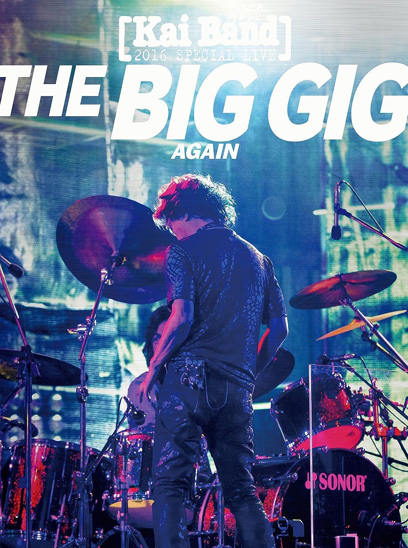 THE BIB GIG AGAIN [DVD] B079FXJWFP