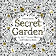 Secret Garden:An Inky Treasure Hunt and Colouring Book