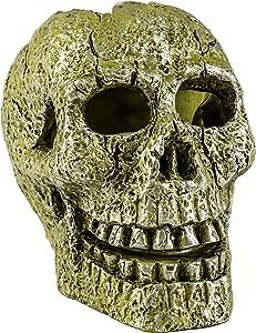 GloFish Ornament, Skull