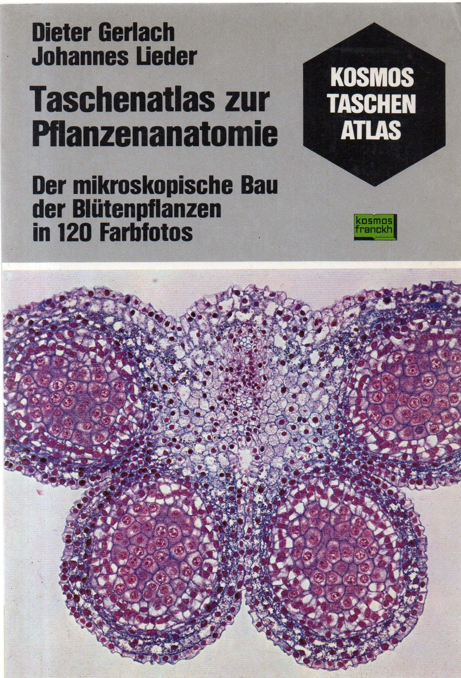 Taschenatlas zur Pflanzenanatomie. Der mikroskopische Bau der ...