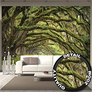 GREAT ART Large Photo Wallpaper – Oak Avenue – Picture Decoration Landscape Summer Forest Mystic Oaks Quercus Fairy Tale Alley Park Branches Image Decor Wall Mural (132.3x93.7in - 336x238cm)