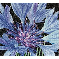 Thea Gouverneur - Counted Cross Stitch Kit - Embroidery Kit - 489A - Pre-Sorted DMC Threads - Cornflower - Aida - 5,9 x…