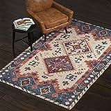 Amazon Brand – Stone & Beam Modern Distressed Vintage Persian Area Rug, 5 x 8 Foot, Multicolor