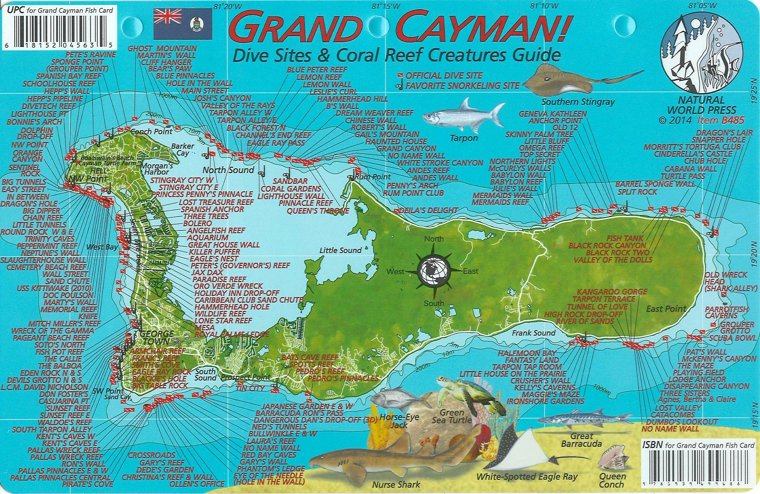 image about Printable Map of Grand Cayman titled Grand Cayman Island Dive Map Reef Creatures Consultant