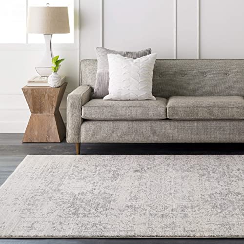 Janine Gray and Beige Updated Traditional Area Rug 2 x 3