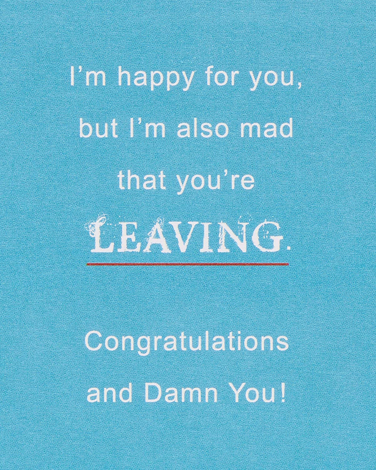 American Greetings Funny Animals Goodbye and Good Luck Congratulations Greeting Card with Foil
