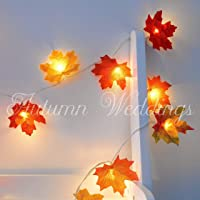 1m 10 LED Mixed Autumn Leaves Fairy Lights - String Lights/Lit Garland - AA Battery Powered - Maple Leaf Wedding Decorations - Bedroom