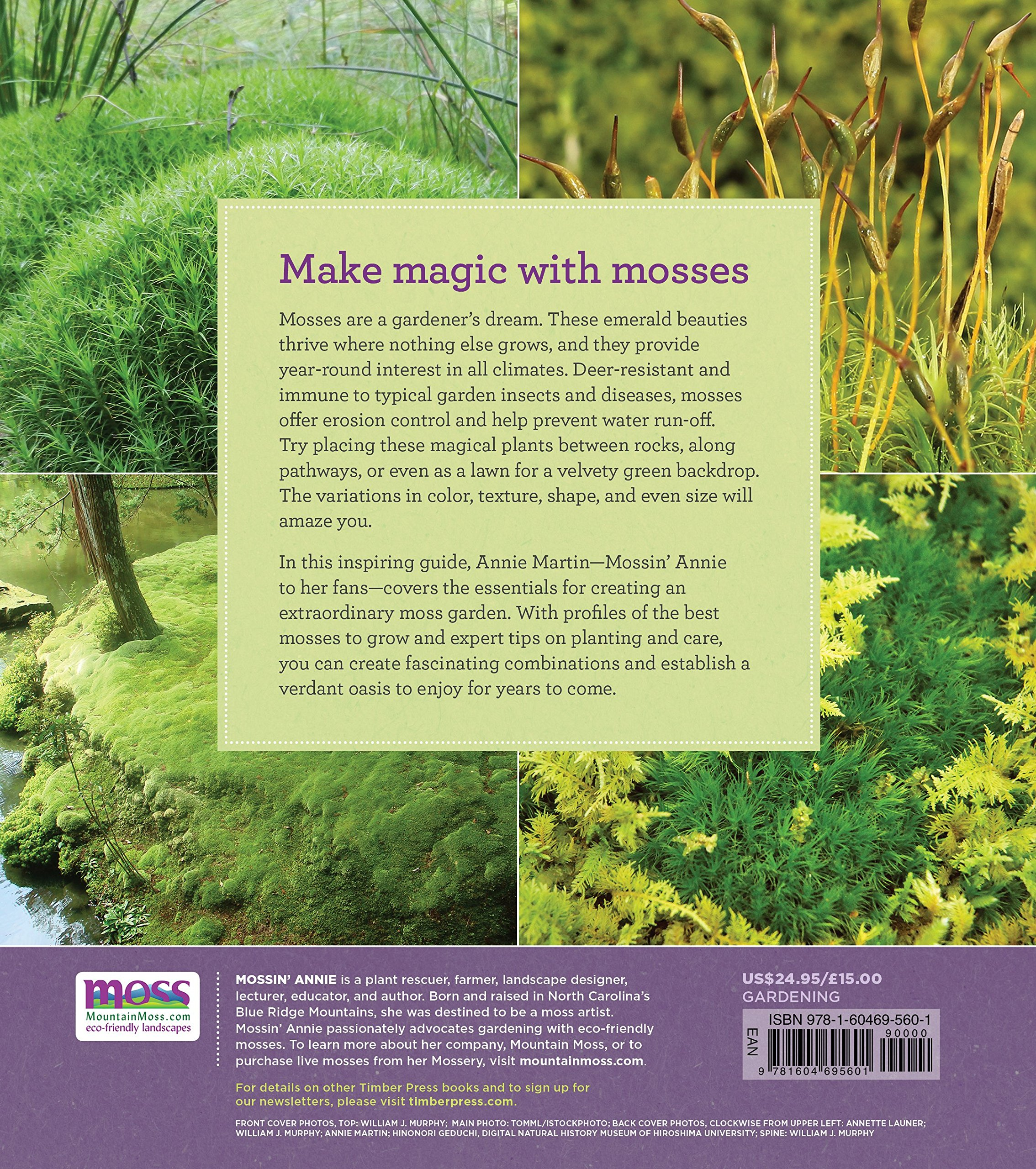 The Magical World Of Moss Gardening Annie Martin 9781604695601 Amazon Books