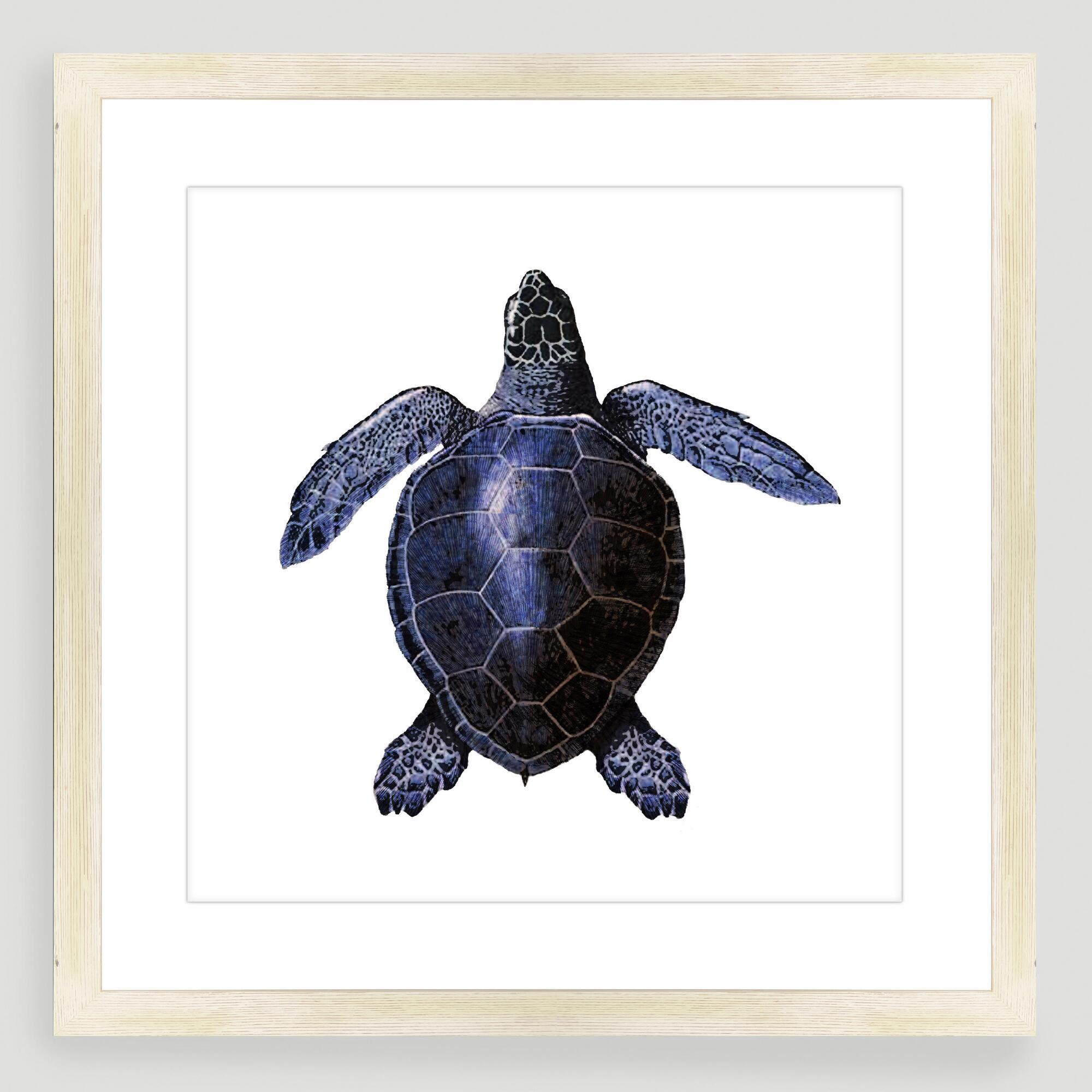 Vintage-Style Turtle Sea Life Wall Art | World Market