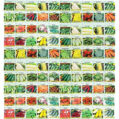 100 Assorted Heirloom Vegetable Seeds 100% Non-GMO (100, Deluxe Assorted Vegetable Seeds) : Garden & Outdoor