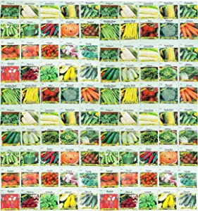 100 Assorted Heirloom Vegetable Seeds 100% Non-GMO (100, Deluxe Assorted Vegetable Seeds)