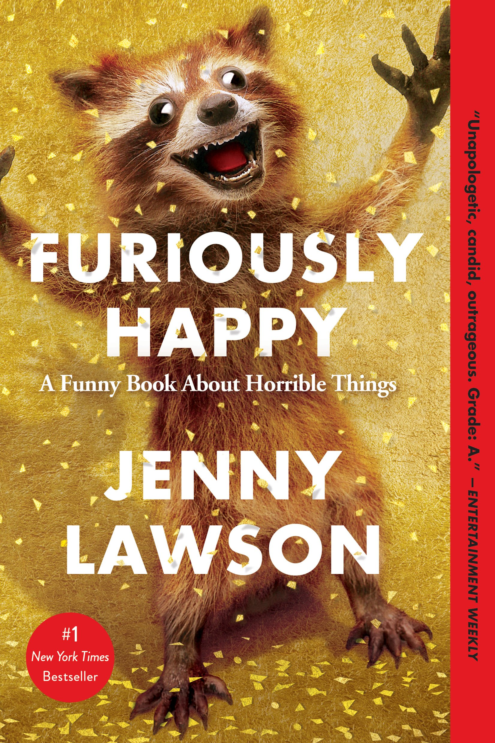 Furiously Happy A Funny Book About Horrible Things Pdf