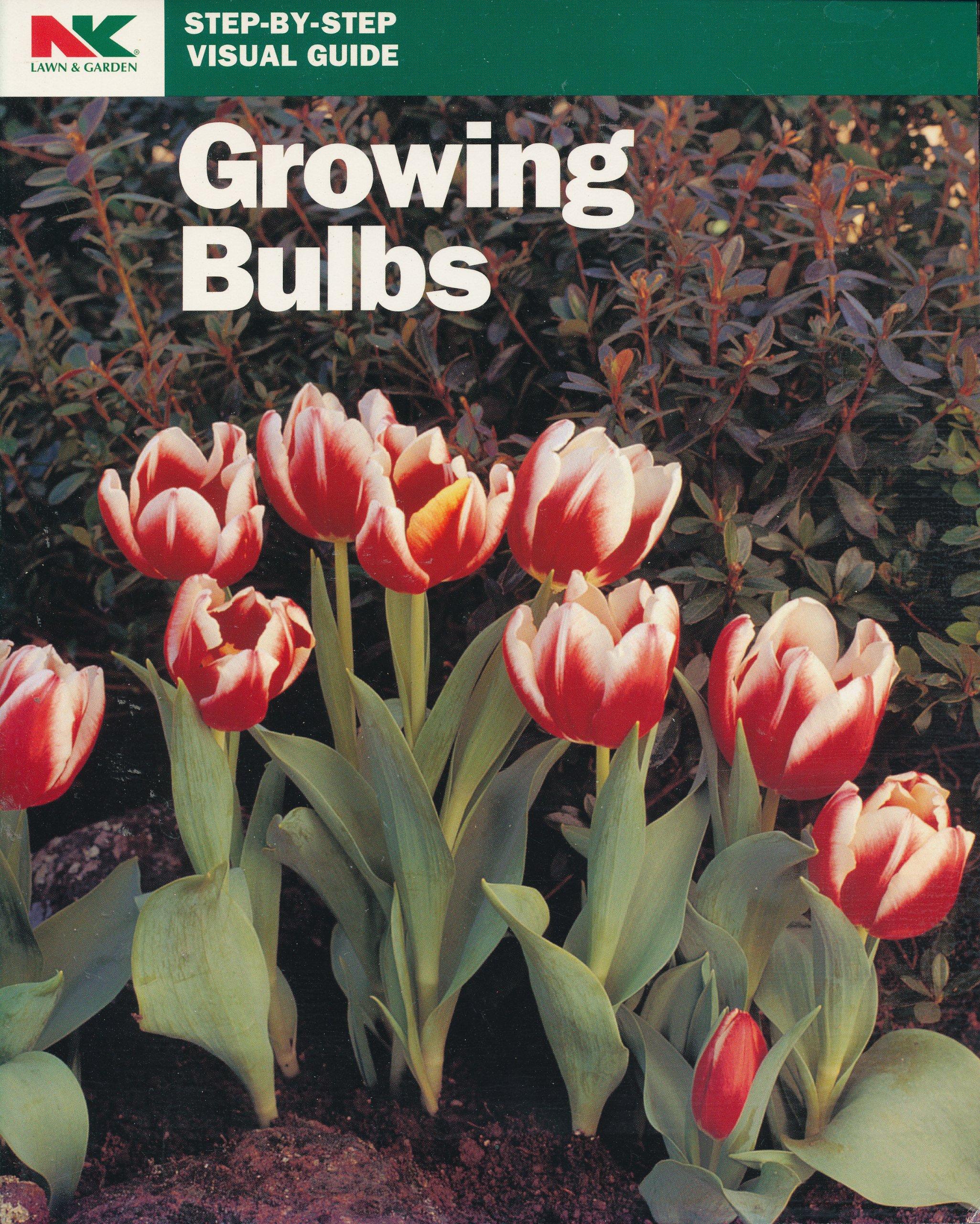 Growing Bulbs (Step-By-Step Visual Guide)