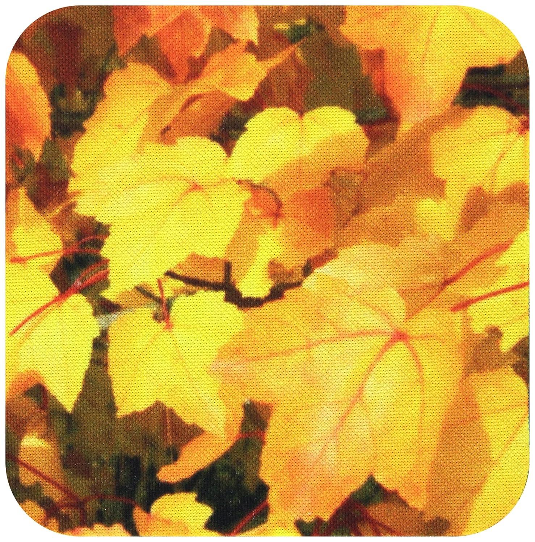 3dRose cst/_28917/_4 Beautiful Orange and Gold Fall Leaves-Ceramic Tile Coasters Set of 8