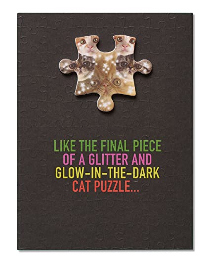 Image Unavailable Not Available For Color American Greetings Funny Cat Puzzle Birthday Card From