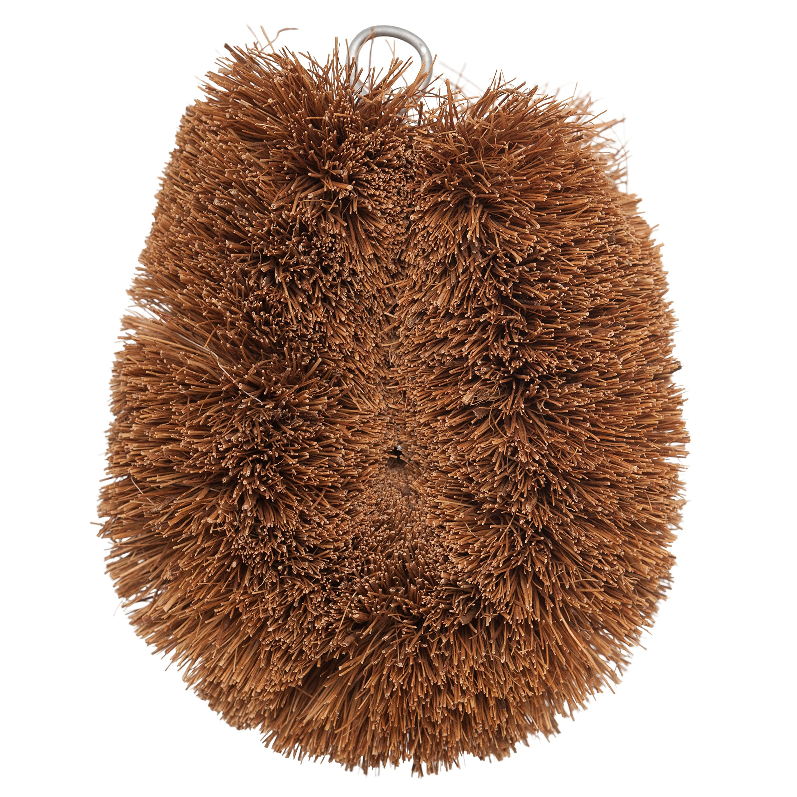 Redecker Vegetable Brush, Coconut Fiber, Set of 2, 4 x 3 inches, Natural Bristles Effectively Clean Soft and Tough-Skinned Fruits and Veggies, Wire Hanging Loop for Storage by REDECKER