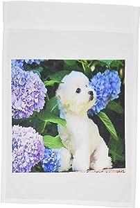 3dRose fl_80886_1 Adorable Bichon Frise Puppy Among Hydrangeas Garden Flag, 12 by 18-Inch