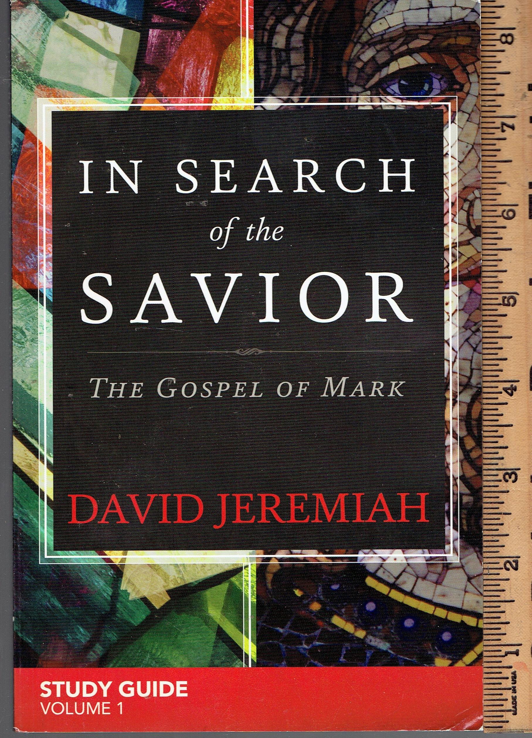 Download In Search of the Savior Study Guide Volume 1 pdf