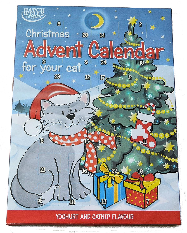 HATCHWELL - Calendario de adviento para Gatos